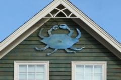 blue-crab-1