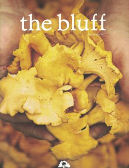 the-bluff-magazine-2015-cover